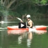 Hippos Attack Rowing Boat and Boatman Speeds Away