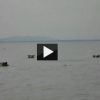 Hippos Chase a Boat Full of Tourists